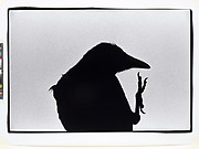 """Erimo Cape, 1976"",  from the series Solitude of Ravens"