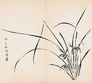 Shizhuzhai shuhua pu<br/>Orchids in Rain, after Wen Zhengming, Leaf from the Ten Bamboo Studio Collection of Calligraphy and Painting, vol. 2