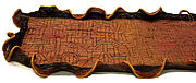 Women's Embroidered Raffia Wrapper (Ntshakokot)