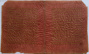 Codex Sinopensis