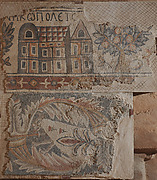 Mosaic Depciting Nikopolis Set over an Altered Animal