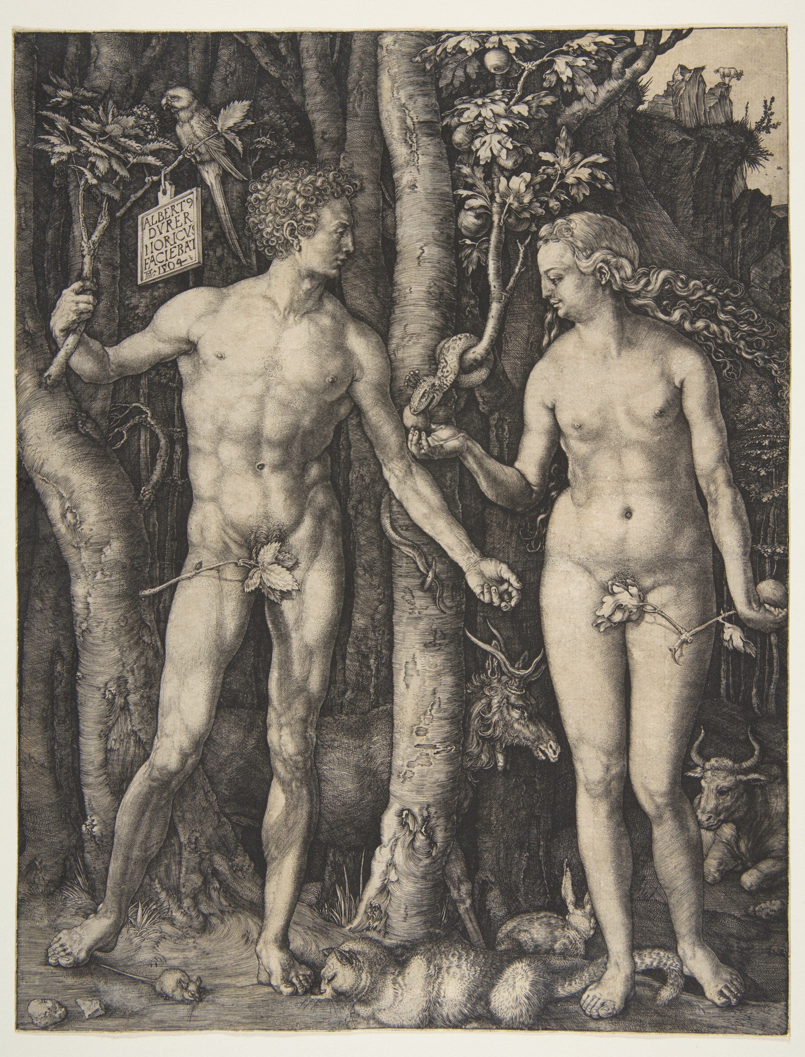 Albrecht Durer Adam And Eve Albrecht d Rer Adam And Eve