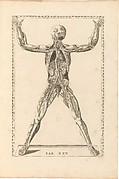 Tabulae Anatomicae