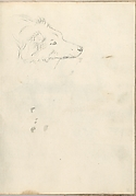 Head of a Dog (Smaller Italian Sketchbook, leaf 35 recto)