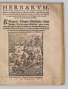 I) Herbarum, Arborum, Fructium, Frumentorum, c. 1540 ... II) De Speciali quarundam plantarum, Frankfurt: Egenolff 1552