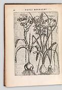Specimen historiae plantarum