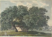 Italian Landscape with Trees (recto)