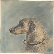 Head of a Scottish Deerhound, after Landseer's