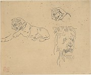 Three Studies of a Lion
