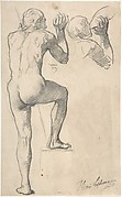 Back View of a Male Nude