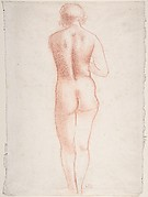 Standing Nude Seen from the Back