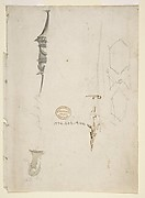 Fragmentary Sketches of Various Ornament