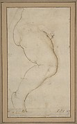 Study of the Right Leg of a Male Child