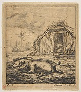 Three Pigs Lying in Front of a Shed