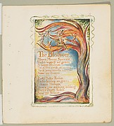 Songs of Innocence and of Experience: The Blossom: Merry Merry Sparrow