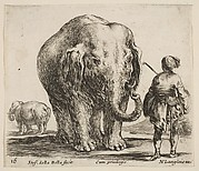 An Elephant and His Mahout