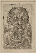 Head of Old Man