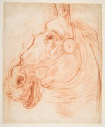 Study for a Horse's Head