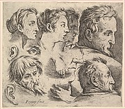 Studies of Heads