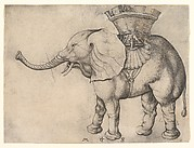 The Elephant