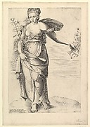 Speculum Romanae Magnificentiae: Flora