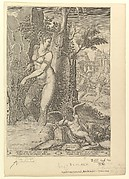 Venus Pricked by the Thorns of a Rose Bush; Cupid Asleep in the Foreground