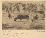 Cows in the Fields of Éragny, near Gisors
