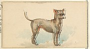 Mexican Hairless, from the Dogs of the World series for Old Judge Cigarettes