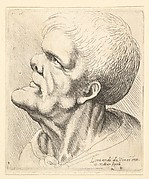 Head of Old Man with Snub Nose and Prominent Chin