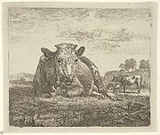 Recumbent Cow, from Different Animals