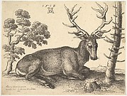 A Stag Lying, Facing Right, Next to a Tree