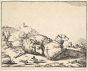 Sheep, from a set of 16 plates