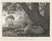 A Tyger (A Recumbent Leopard by a Tree)