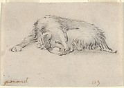 Study of a Sleeping Dog