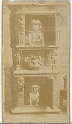 [Child and dog posing in fireplace], from the Actors and Actresses series (N145-8) issued by Duke Sons & Co. to promote Duke Cigarettes