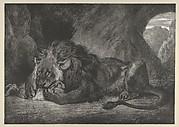 Lion of the Atlas Mountains