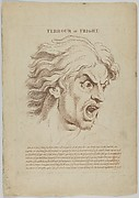 Terrour or Fright (from Heads Representing the Various Passions of the Soul; as they are Expressed in the Human Countenance: Drawn by that Great Master Monsieur Le Brun)