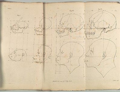The Works of the late Professor Camper, on The Connexion [sic] between the Science of Anatomy and The Arts of Drawing, Painting, Statuary &c. &c.