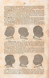 A History of the Amistad Captives: Being a Circumstantial Account of the Capture of the Spanish Schooner Amistad, by the Africans on Board; Their Voyage, and Capture near Long Island, New York; with Biographical Sketches of Each of the Surviving Africans.