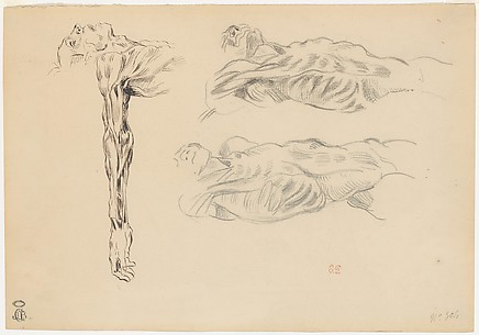 Écorché: Three Studies of a Male Cadaver