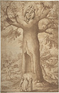 The Beech Tree of the Madonna at La Verna
