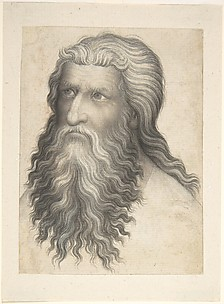 Head of a Bearded Man
