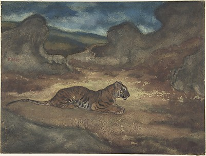 Tiger in Landscape
