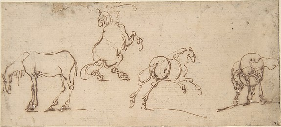 Four Studies of Horses