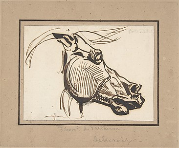 Head of a Horse, after the Parthenon
