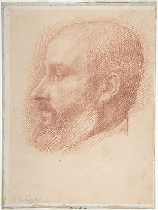 Study of a Head of a Man