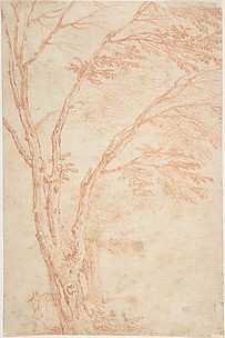 A tree and figure