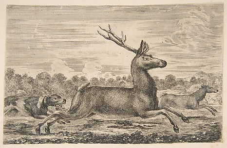 Hounds Chasing a Stag and a Doe