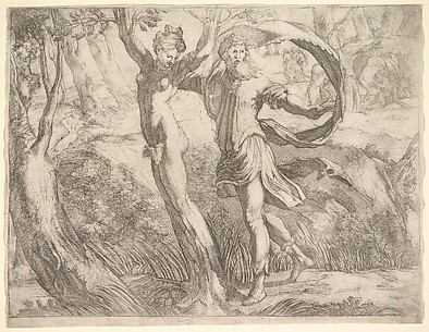 Priapus and Lotis