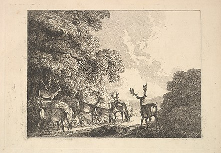 A Group of Stags Drinking (from Imitations of Modern Drawings)